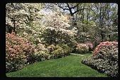 view [Watts Garden]: view from front garden. digital asset: [Watts Garden]: view from front garden.: 1997 May.