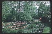 view [Watts Garden]: lower rear slope. digital asset: [Watts Garden]: lower rear slope.: 1950.
