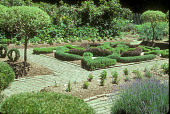 view [Well-Sweep Herb Farm]: overview of formal herb garden and knot garden; note plant labels. digital asset: [Well-Sweep Herb Farm] [slide]: overview of formal herb garden and knot garden; note plant labels.