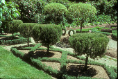 view [Well-Sweep Herb Farm]: view of the formal herb garden and knot garden. digital asset: [Well-Sweep Herb Farm] [slide]: view of the formal herb garden and knot garden.