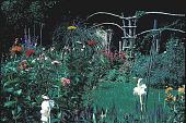view [Trenton Garden III]: garden looking west. digital asset: [Trenton Garden III]: garden looking west.: 2001 Sep.