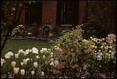 view [Woodlands Stables, Llewellyn Park]: Garden and fountain in spring. digital asset: [Woodlands Stables, Llewellyn Park]: Garden and fountain in spring.: 1963?
