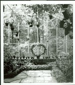 view [Billings Garden]: interior of greenhouse looking out to woods. digital asset: [Billings Garden] [safety film negative and photographic print]: interior of greenhouse looking out to woods.