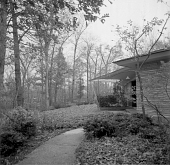 view [Wing Haven]: view of plantings near house, showing woodland setting. digital asset: [Wing Haven] [safety film negative]: view of plantings near house, showing woodland setting.