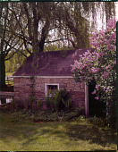 view [Fulton Garden]: springhouse and lilac bush. digital asset: [Fulton Garden] [film transparency]: springhouse and lilac bush.
