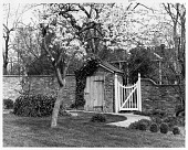 view [Vila Garden]: spring view of flowering cherry, brickwall and garden shed, and gate. digital asset: [Vila Garden] [contact print and safety film negative]: spring view of flowering cherry, brickwall and garden shed, and gate.