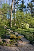 view [New Jersey Woodland Property]: stone pavers complement the blue stone steps leading up the hillside. digital asset: [New Jersey Woodland Property]: stone pavers complement the blue stone steps leading up the hillside.: 2009 Apr.