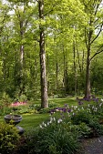 view [New Jersey Woodland Property]: spring bulbs and perennials were planted to brighten the lawn. digital asset: [New Jersey Woodland Property]: spring bulbs and perennials were planted to brighten the lawn.: 2009 May.