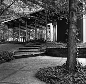 view [Gleason Garden]: looking up from patio to house. digital asset: [Gleason Garden] [safety film negative]: looking up from patio to house.