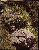 view Unidentified Garden in New Jersey: sundial on a rustic rock base. digital asset: Unidentified Garden in New Jersey [film transparency]: sundial on a rustic rock base.