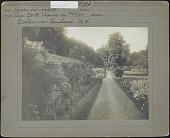 view Van Cortlandt Manor: Roses on wall digital asset: Van Cortlandt Manor [photoprint]