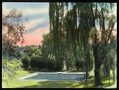 view Voislawsky Garden digital asset: Voislawsky Garden: [between 1914 and 1949?]
