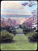 view Betts Garden digital asset: Betts Garden: [between 1914 and 1949?]