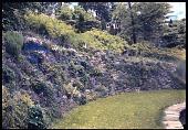 view Burrwood digital asset: Burrwood: [between 1914 and 1949?]