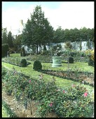 view [The Braes]: rose garden with sculpture. digital asset: [The Braes]: [between 1914 and 1949?]