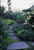 view [Robert Wong Gardens]: stepping stones are set between lush flower beds. digital asset: [Robert Wong Gardens] [transparency]: stepping stones are set between lush flower beds.