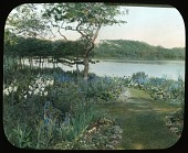 view Creeks, The digital asset: Creeks, The: [between 1914 and 1949?]
