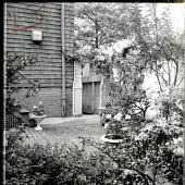view [Broughton Garden]: view of garden looking toward house. digital asset: [Broughton Garden] [photographic print]: view of garden looking toward house.