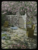 view Page Garden digital asset: Page Garden: [between 1914 and 1949?]