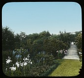 view Poplar Hill (NY) digital asset: Poplar Hill (NY): [between 1914 and 1949?]