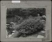 view [Sonnenberg Gardens]: part of the Japanese garden. digital asset: [Sonnenberg Gardens] [photographic print]: part of the Japanese garden.
