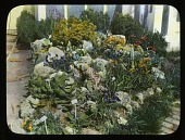 view [Beacon Hill] (NY): Rock garden digital asset: [Beacon Hill] (NY) [photoprint]