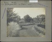 view Albro House: Hardy grass digital asset: Burton Garden [photoprint]