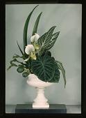 view New York Flower Show digital asset: New York Flower Show: 03/08/1948
