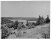 view [Miscellaneous Sites in the Adirondack Mountains]: an unidentified location, possibly Lake Colby near Saranac Lake. digital asset: [Miscellaneous Sites in the Adirondack Mountains] [glass negative]: an unidentified location, possibly Lake Colby near Saranac Lake.