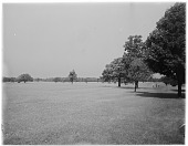 view Delaware Park digital asset: Delaware Park [photonegative]