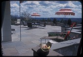 view [Cole Garden]: broad view of terrace and seating area. digital asset: [Cole Garden] [slide (photograph)]: broad view of terrace and seating area.