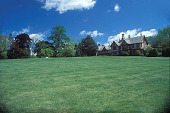 view [Hillwood]: house with lawn and specimen trees. digital asset: [Hillwood]: house with lawn and specimen trees.: 2002 May.