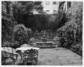 view [Stevens Garden]: overview of garden. digital asset: [Stevens Garden] [photographic print]: overview of garden.