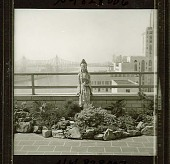 view [Young Garden]: the garden, looking toward the East River with the Queensboro (59th Street) Bridge in the left background. digital asset: [Young Garden] [safety film negative and photographic print]: the garden, looking toward the East River with the Queensboro (59th Street) Bridge in the left background.