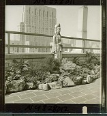 view [Young Garden]: penthouse garden with view of skyline and New York Hospital (now New York-Presbyterian Hospital-Weill Cornell Medical Center) in the background. digital asset: [Young Garden] [safety film negative and photographic print]: penthouse garden with view of skyline and New York Hospital (now New York-Presbyterian Hospital-Weill Cornell Medical Center) in the background.