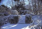 view [Avondale Farm]: eagles in winter guarding the steps to the cistern. digital asset: [Avondale Farm]: eagles in winter guarding the steps to the cistern.: 2002 Jan.