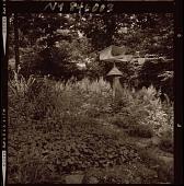 view [Unidentified Garden in Armonk, New York, No. 2]: garden beds, trees, and bird feeder. digital asset: [Unidentified Garden in Armonk, New York, No. 2] [photonegative]: garden beds, trees, and bird feeder.