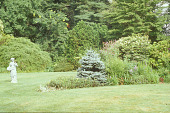 """view [Mason Garden]: female sculpture in sweeping lawn near """"pointed"""" perennial bed. digital asset: [Mason Garden]: female sculpture in sweeping lawn near """"pointed"""" perennial bed.: 2006 Jul."""