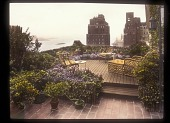 view [Unidentified Rooftop Garden]: a rooftop garden overlooking the East River. digital asset: [Unidentified Rooftop Garden] [slide (photograph) of a lantern slide]: a rooftop garden overlooking the East River.