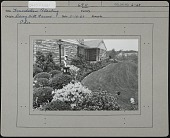 view Daisy Hill Farms: foundation plantings and lawn jockey at house. digital asset: Daisy Hill Farms [photoprint] foundation plantings and lawn jockey at house.