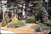 view Rowe Arboretum digital asset: Rowe Arboretum: 02/01/1992