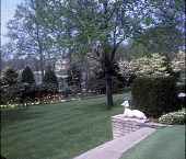 view [The Garden of Mr. and Mrs. Russell Farley] digital asset: [The Garden of Mr. and Mrs. Russell Farley]: 1965.