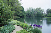 view [Valley View Farm]: facing west, a view of the pond, mature trees, and spring flowers emerging in the perennial garden. digital asset: [Valley View Farm]: facing west, a view of the pond, mature trees, and spring flowers emerging in the perennial garden.: 2001 May.