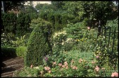 view [Eleanore Shulman Garden]: Descending stairs leads through English Cottage garden to mid and lower terraces. digital asset: [Eleanore Shulman Garden]: Descending stairs leads through English Cottage garden to mid and lower terraces.: 2010 May