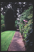 view [High Hatch]: formal garden with Irish yew. digital asset: [High Hatch]: formal garden with Irish yew.: 1997 May.