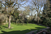 view [A Plant Collector's Garden]: in winter the bare branches of the Garry oak add a sculptural element to the garden. digital asset: [A Plant Collector's Garden]: in winter the bare branches of the Garry oak add a sculptural element to the garden.: 2015 Feb.