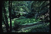 view [Stubblefield Garden]: facing north down slope to bridge from parking. digital asset: [Stubblefield Garden]: facing north down slope to bridge from parking.: 1995 May.
