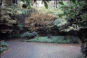 view [Vollum Garden]: top of drive; Littman sculpture. digital asset: [Vollum Garden]: top of drive; Littman sculpture.: 1996.