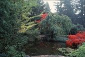 view [Vollum Garden]: view of pond. digital asset: [Vollum Garden]: view of pond.: 1996.