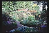 view [Moot Pointe]: northwest view of perennial garden. digital asset: [Moot Pointe]: northwest view of perennial garden.: 1997 Oct.